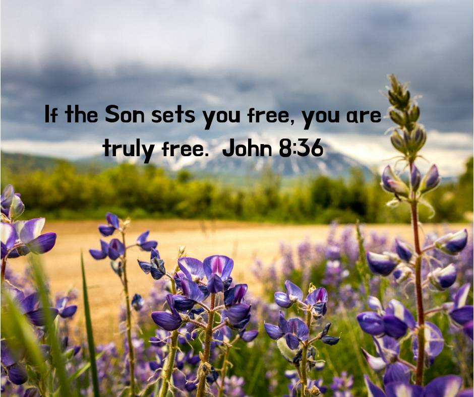 If the Son sets you free, you are truly free. John 8_36