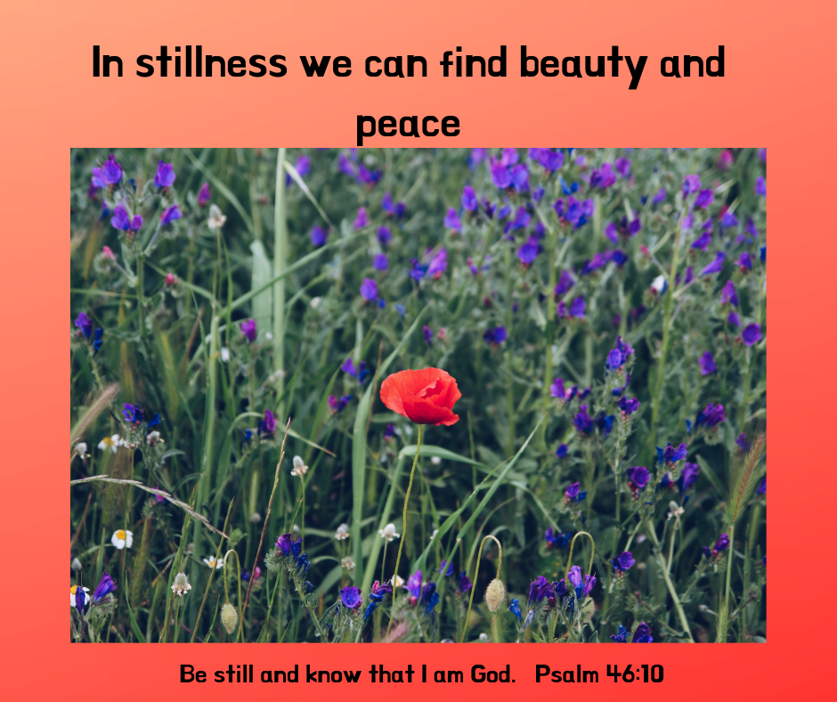In stillness we can find beauty and peace